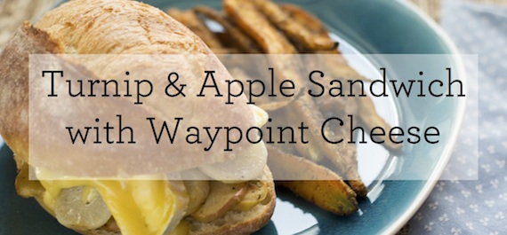 Caramelized Turnip & Apple Sandwich with Waypoint Cheese, Pecan Mustard & Baked Carrot Sticks