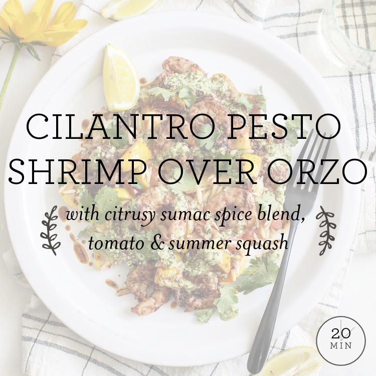 Herb Pesto Shrimp Over Orzo with citrusy sumac spice blend, tomato & summer squash